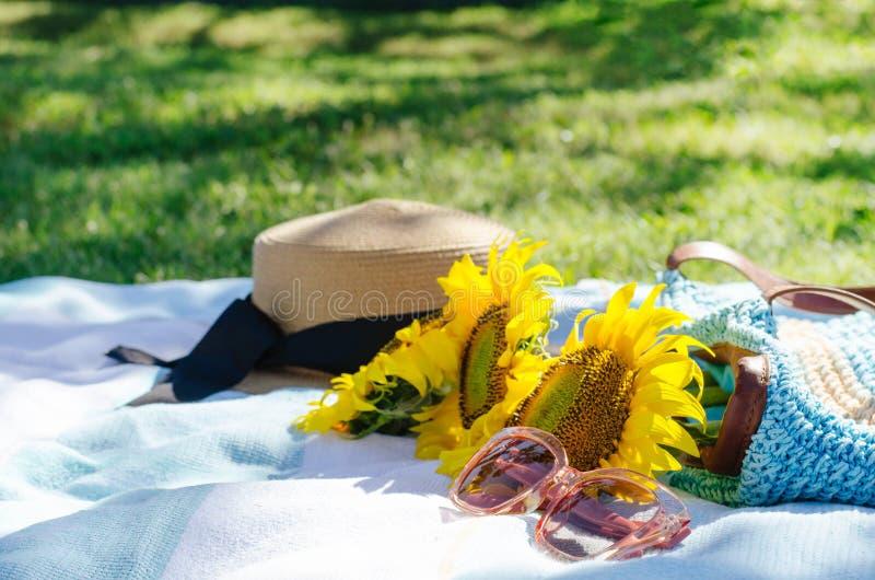 Comida campestre del verano en la hierba verde con los accesorios brillantes foto de archivo