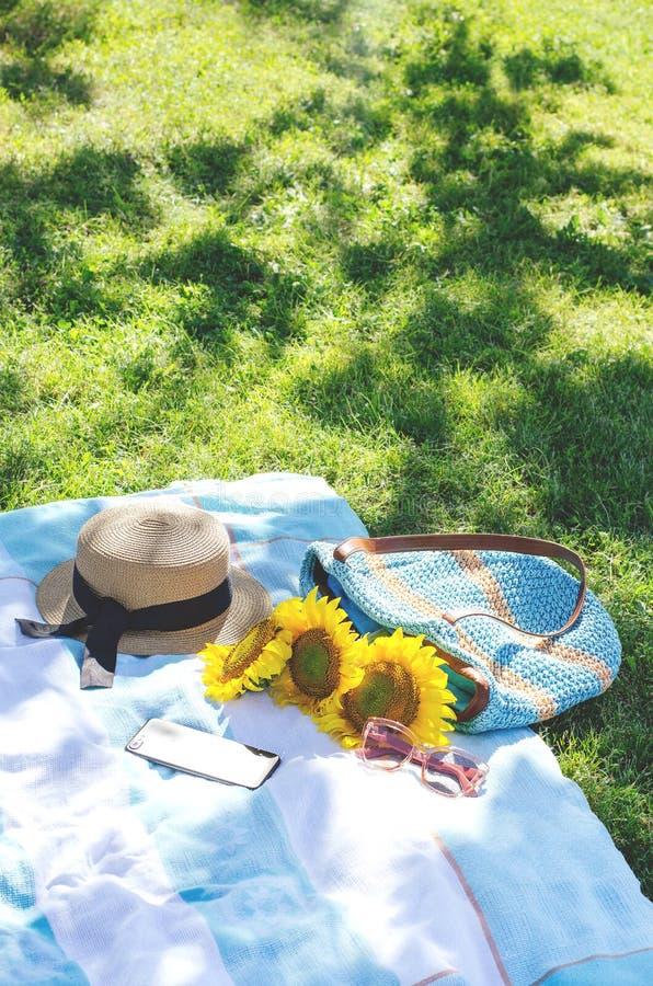 Comida campestre del verano en la hierba verde con los accesorios brillantes fotos de archivo
