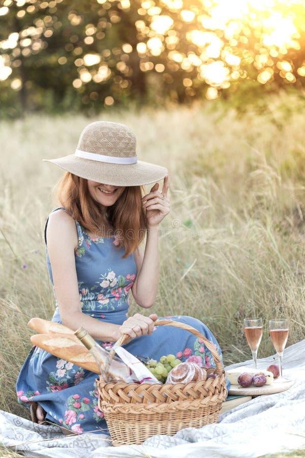 Comida campestre en el prado fotografía de archivo