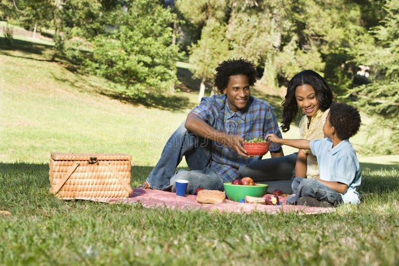 Comida campestre en parque.