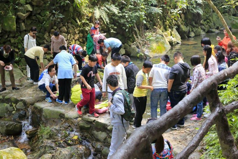 Comida campestre turística en el centro turístico del bosque virginal foto de archivo libre de regalías