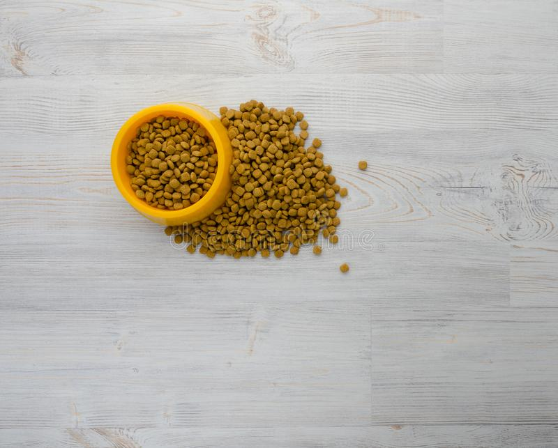 Comida de gato na bacia fotografia de stock