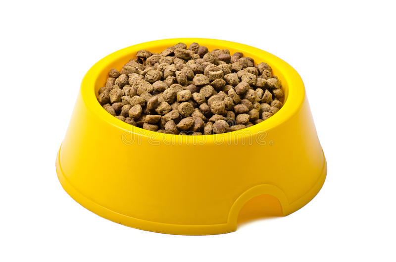 Comida de gato seca na bacia amarela fotografia de stock