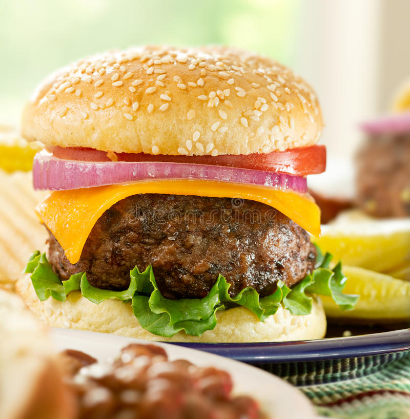 Comida de la hamburguesa imágenes de archivo libres de regalías