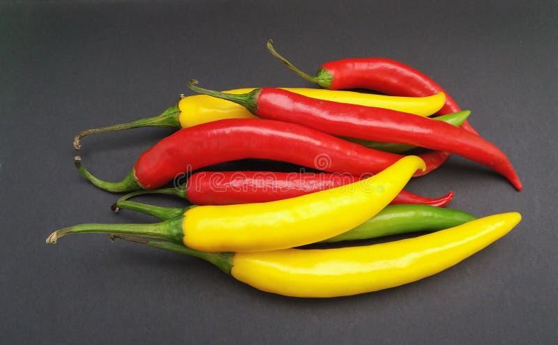 Comida de las verduras de la pimienta del chile picante fotografía de archivo