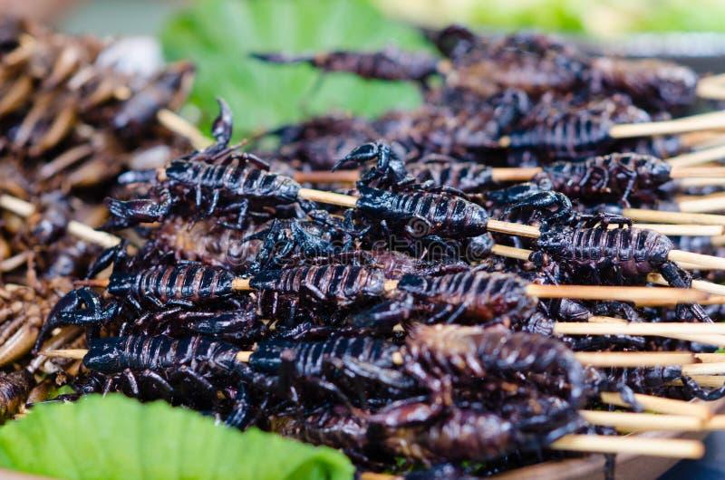 Comida de los escorpiones imágenes de archivo libres de regalías