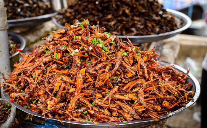 Comida de los insectos en Camboya imagenes de archivo