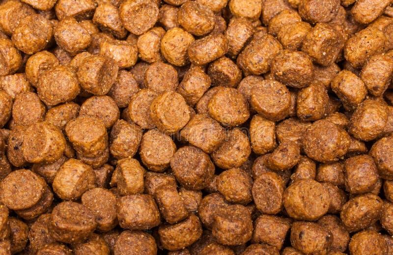 Comida de perro imagen de archivo libre de regalías