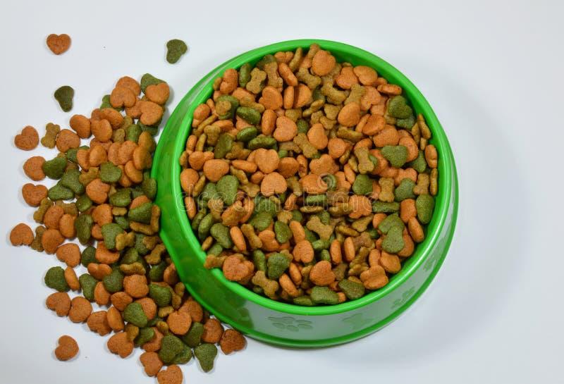 Comida de perro en cuenco verde fotos de archivo