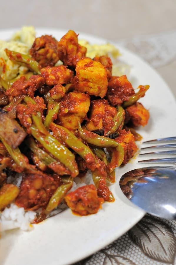 Comida determinada del Malay picante foto de archivo libre de regalías