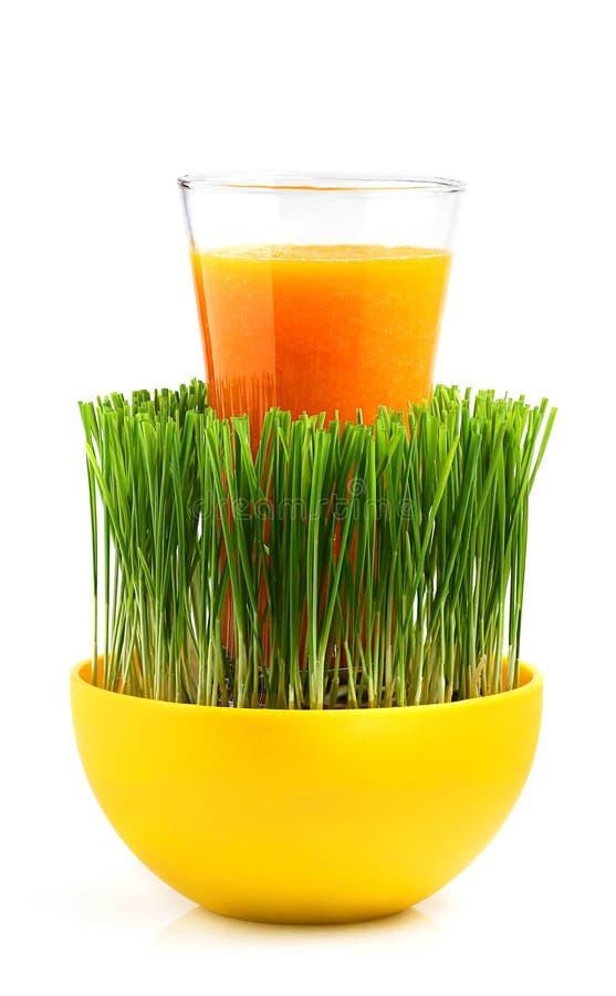 Comida ecológica. Jugo natural en un vidrio. imagen de archivo