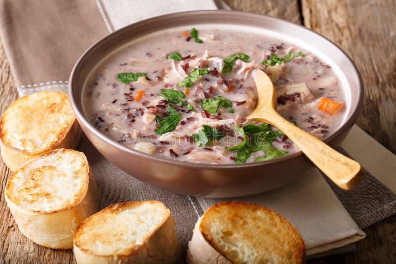 Comida natural: sopa del arroz salvaje con cierre-u del pollo y de las verduras fotografía de archivo libre de regalías