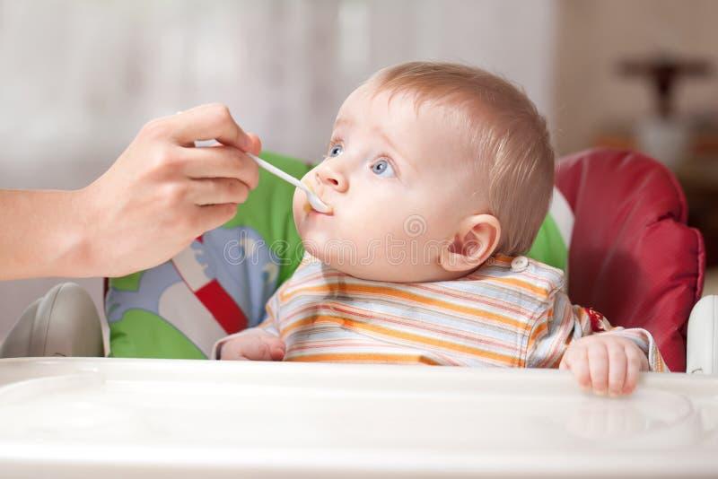 Comida para bebé de alimentação da matriz ao bebê fotografia de stock royalty free