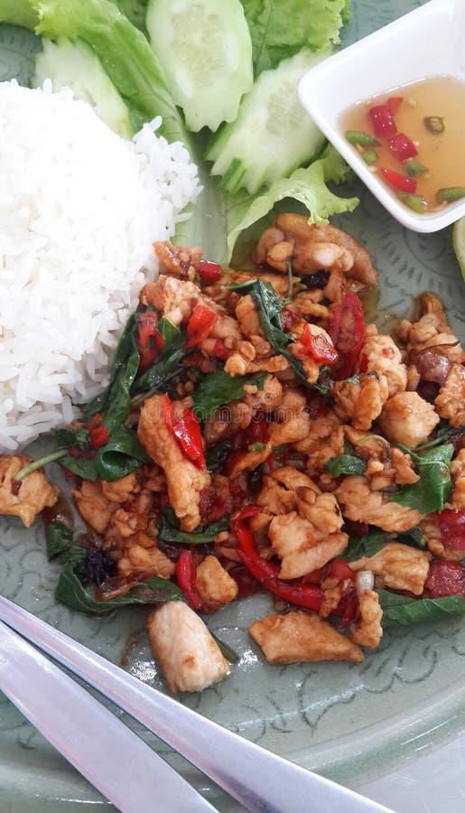 Comida picante tailandesa, pollo sofrito con albahaca imágenes de archivo libres de regalías