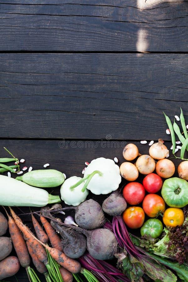 Comida rústica fresca del otoño, cosecha de la caída de la agricultura Copie el espacio para el texto imagen de archivo