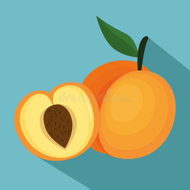 Comida sana del melón fresco libre illustration