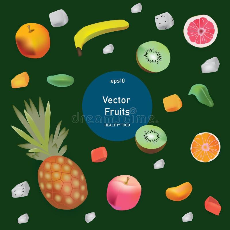 Comida sana del sistema del estilo del realismo del vector Frutas libre illustration