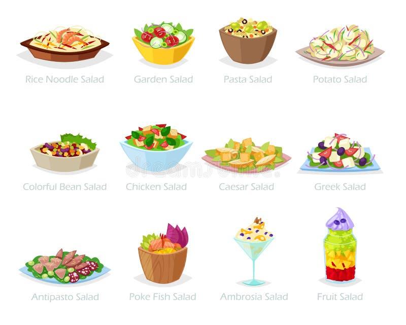 Comida sana del vector de la ensalada con las verduras frescas tomate o patata en ensalada-cuenco o ensalada-plato para la cena o ilustración del vector