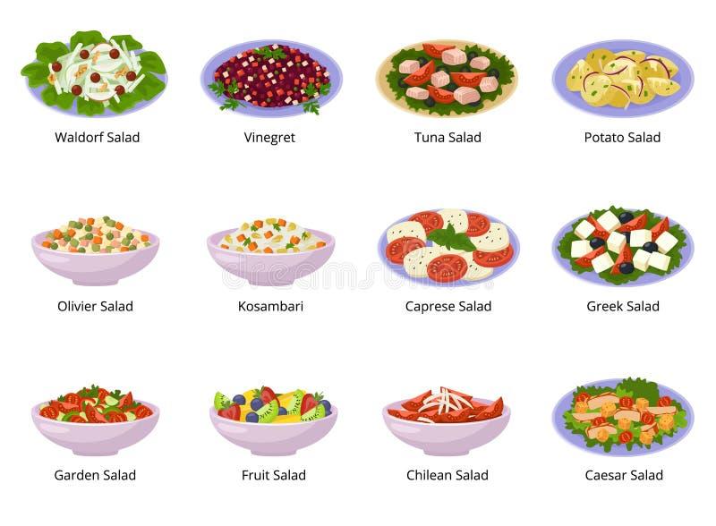 Comida sana del vector de la ensalada con las verduras frescas tomate o patata en ensalada-cuenco o ensalada-plato para la cena o stock de ilustración