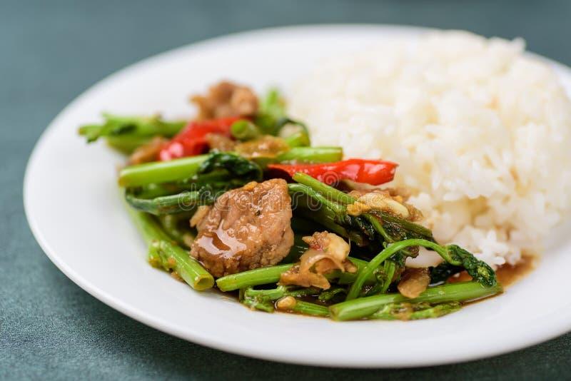 Comida tailandesa, cojín sofrito Pak Boong de la correhuela imagen de archivo libre de regalías