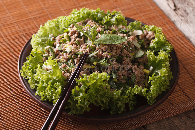 Comida tailandesa: ensalada del laab de la carne picadita con las hierbas, horizontal fotos de archivo libres de regalías