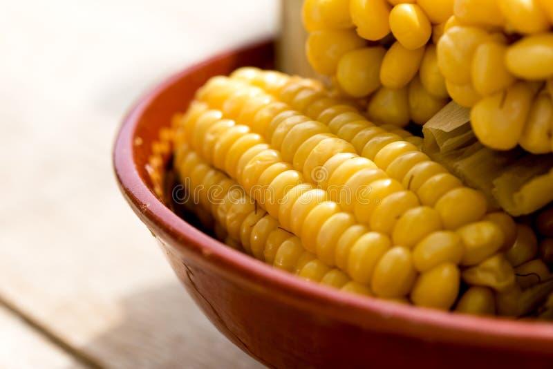 Comida vegetariana sana, recientemente maíz dulce hervido cocinado hecho en casa en mazorca fotos de archivo libres de regalías