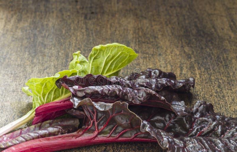 Comida verde orgánica fresca de la opinión de sobremesa Hojas sanas vegetales del verde Cardo suizo en el wo fotografía de archivo