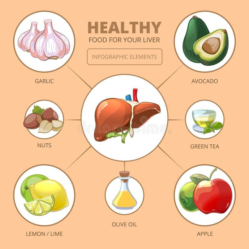 Comidas sanas para el hígado Salud médica ilustración del vector