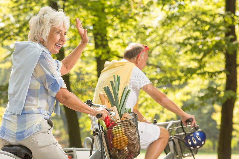 Coming back from grocery. Elderly active marriage coming back from grocery on bicycles stock image