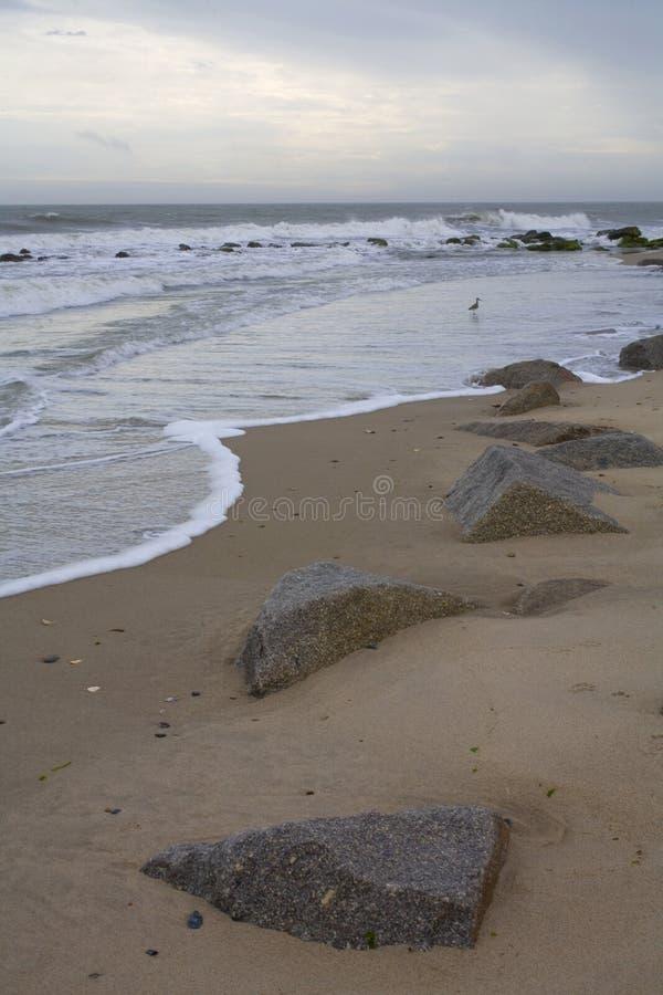 Download Coming tide stock photo. Image of beach, atlantic, tidal - 5478586