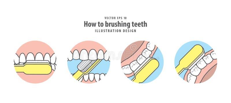 Comment au vecteur de brossage d'illustration de dents sur le fond bleu illustration stock