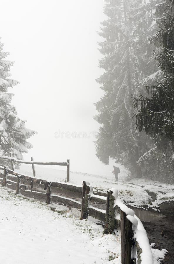 Comment prendre une photo pendant l'hiver photo stock