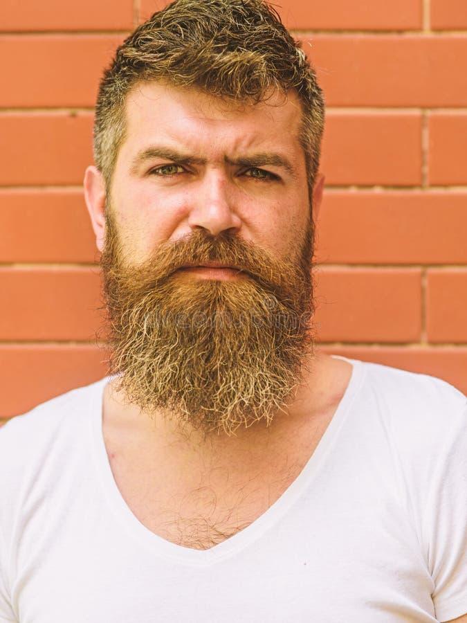 Comment se laisser pousser la grande barbe Le toilettage de barbe n'a jamais été si facile Les tours de soin de barbe garderont v image libre de droits