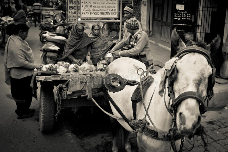 Commerçant d'Amritsar, Pendjab, Inde photos stock