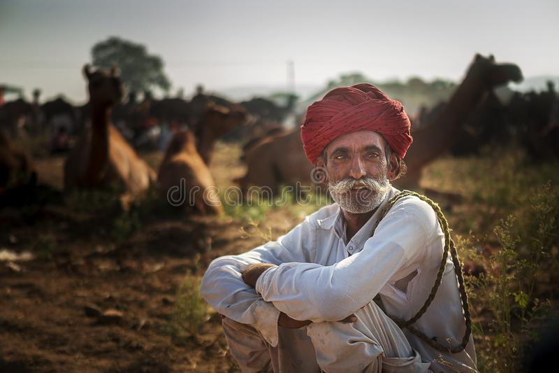 Commerçant de chameau dans le chameau pushkar juste image stock