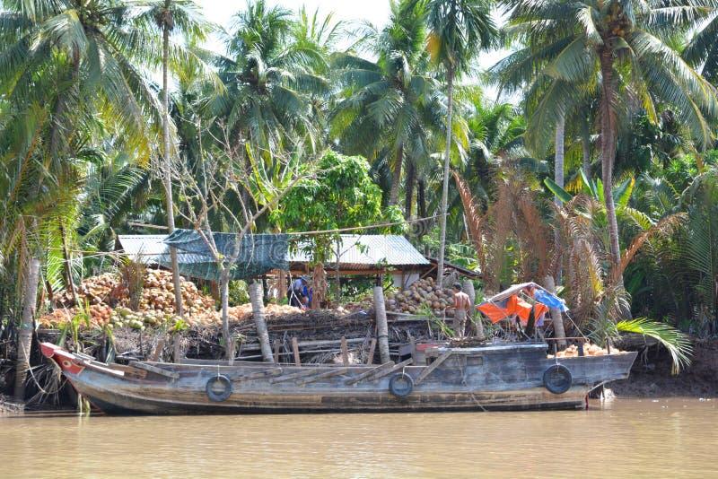 Commerçants de noix de coco Ben Tre Région de delta du Mékong vietnam photo libre de droits