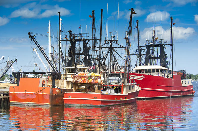 Download Commercial fishing boats stock photo. Image of seagulls - 20638748