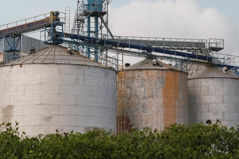 Commercial grain or seed silos in the rural landscape. Port area royalty free stock images