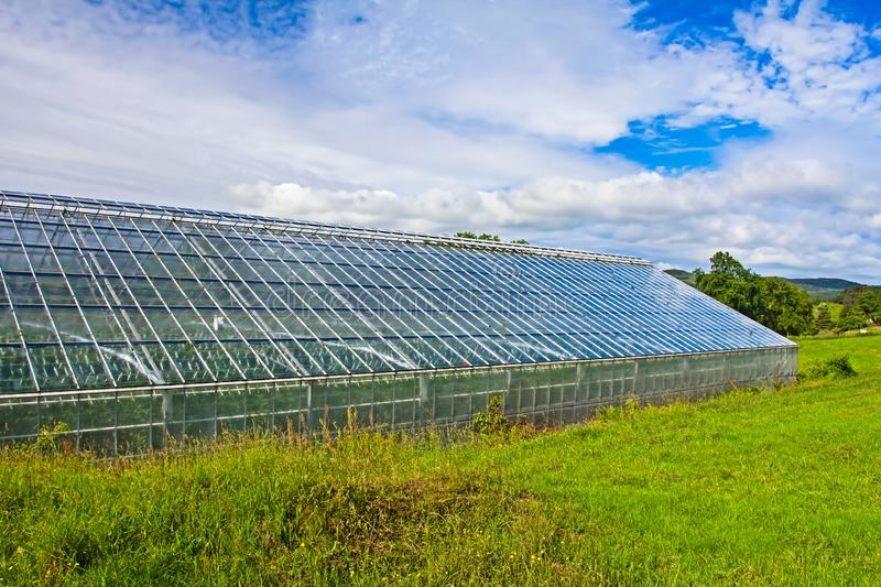 Commercial greenhouse against cloudy blue sky royalty free stock photography