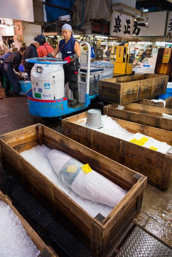 Commercializzi il lavoratore che conduce il carrello che passa i tonnidi congelati fotografia stock libera da diritti