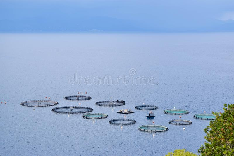The fish farms. stock photo