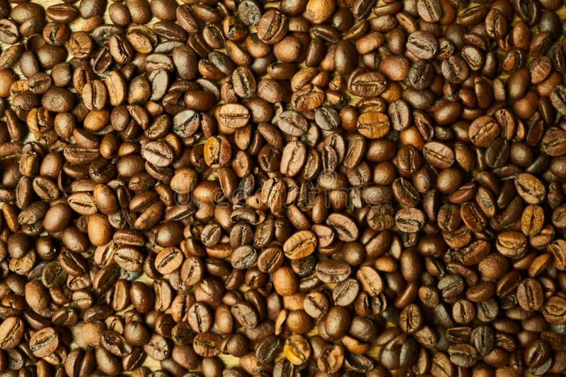 Commodity, Seed, Bean, Nuts & Seeds royalty free stock photos