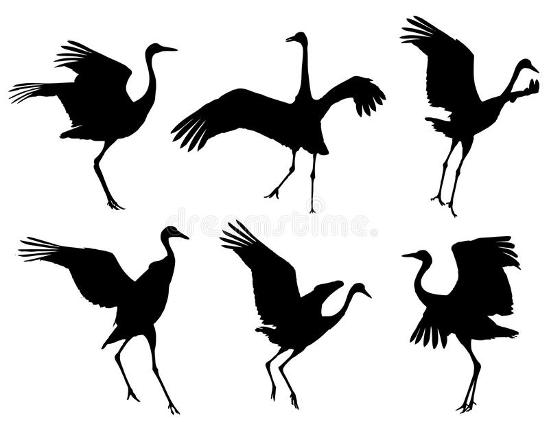 Common Crane in the dance silhouettes set royalty free illustration