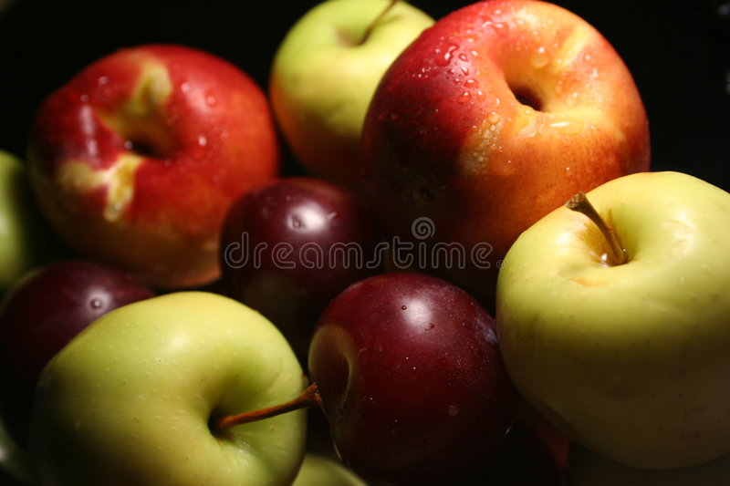 Common fruits stock photography