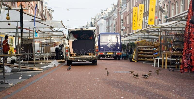 Common Starling, Spreeuw, Sturnus vulgaris. Common Starling group feeding on the ground in Amsterdam; Spreeuw groep fouragerend op de grond in de Albert Cuyp in royalty free stock images