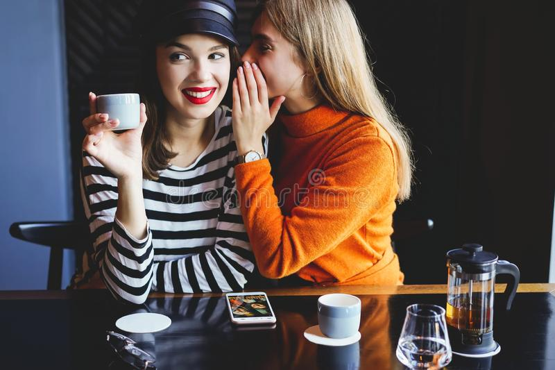 Communicatie en vriendschapsconcept - glimlachende jonge vrouwen met koffiekoppen bij koffie stock foto's