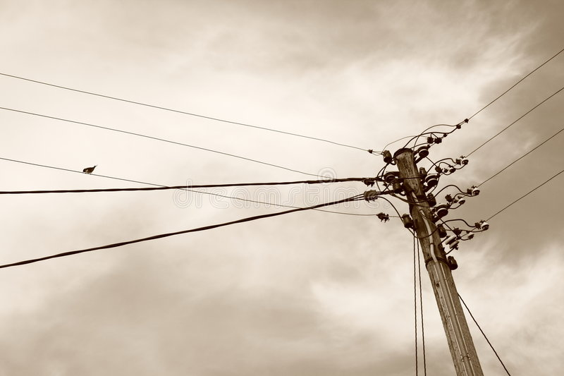 Download Communication stock photo. Image of bird, message, electrical - 5278276
