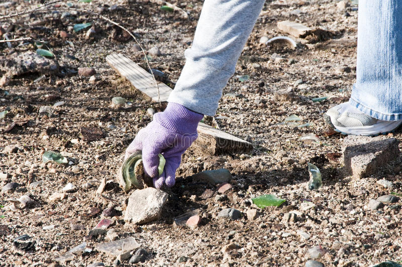Download Community park cleanup stock image. Image of gloves, park - 13101371