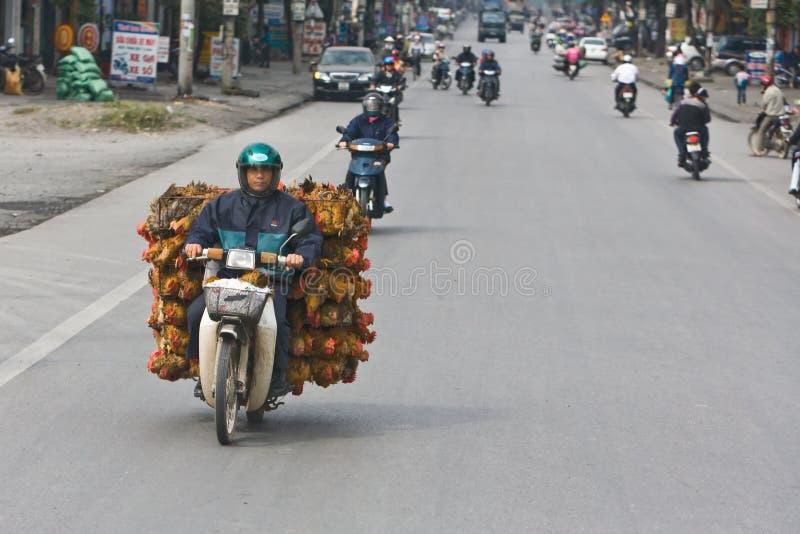 Como 50 galinhas cruzam a estrada fotos de stock