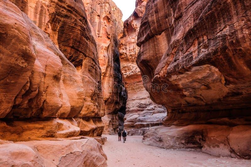 Como-Siq PETRA, Jordânia fotografia de stock royalty free